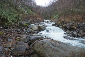 一番上の治山ダムの上流は、大きな石が目立つ。