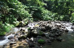 治山ダムの堆砂域の上流には大きな石が上流へ向かって貯まり続けている。