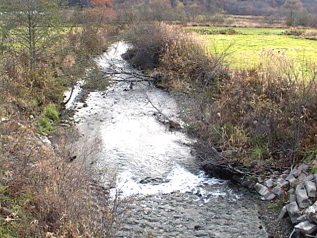 2003年・貯砂ダムのかなり上流の支流河岸崩壊DV-00799-A-067
