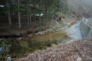 砂利が失われて、川底の岩盤の露出が広がっている。