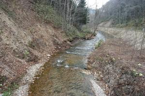 砂利が治山ダムによって止められているために、下流では川底の砂利が失われ、川底の岩盤の露出が広がっている。岩盤化が広がれば、魚たちは産卵することができなくなる。