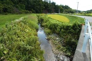 2004-08-25・加工済・厚別川・元神部川・151