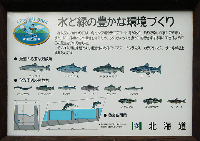 2004-10-30・加工済・様似川・006