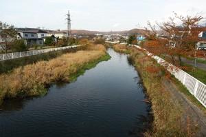2004-11-06・加工済・鷲別川・082