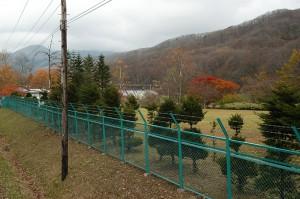 2004-11-06・加工済・鷲別川・116
