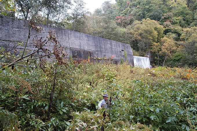 青山ダム下流の支流「二番川」の黒部ダム