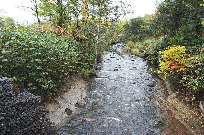 川底の砂利が流されて、岩盤が露出している。