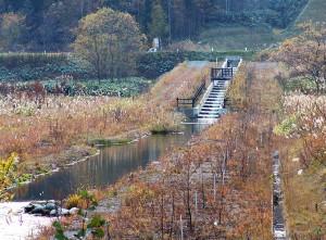 2005-11-02・加工済・ピリカダム魚道・141426