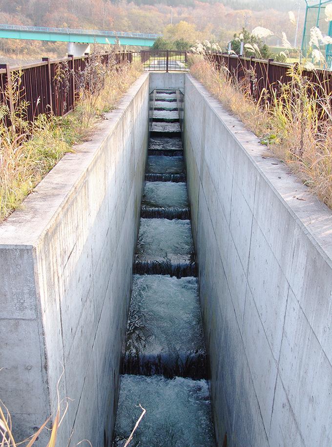 2005-11-02・加工済・後志利別川・ピリカダム・魚道・143515