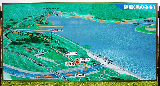 2005-11-02・加工済・後志利別川・ピリカダム・魚道・143923