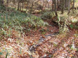 2005-11-09・加工済・ポンオサツ川・DSC05389