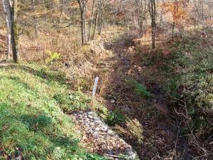 2005-11-09・加工済・ポンオサツ川・DSC05392
