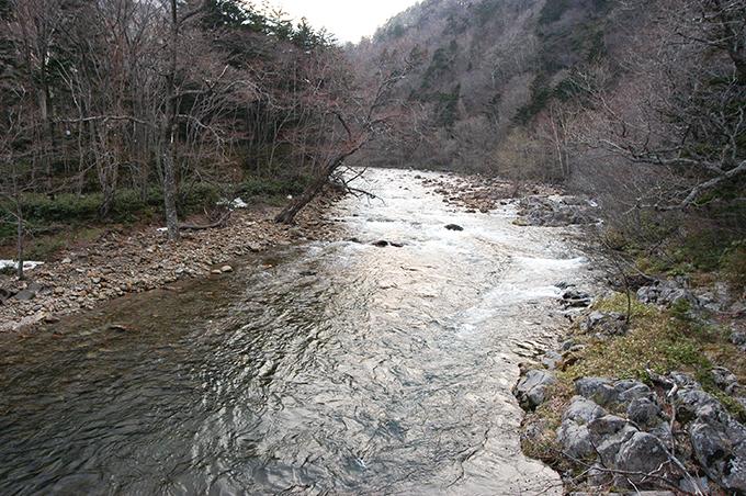 2006-04-29・加工済・猿留川・DSC_0103