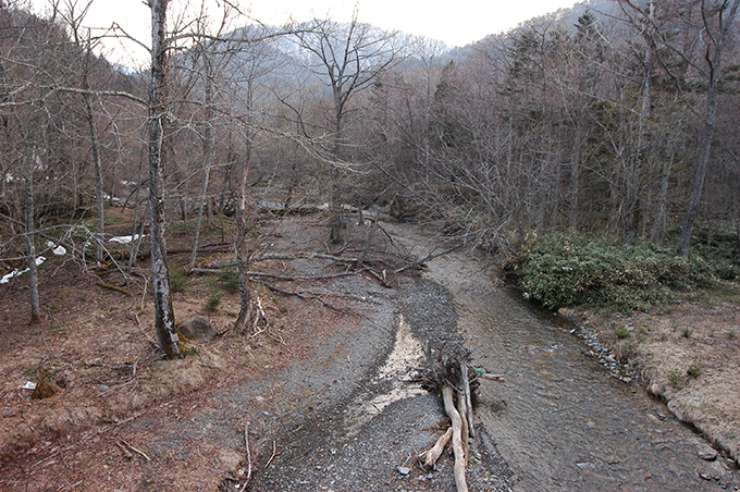 2006-04-29・加工済・猿留川・DSC_0121