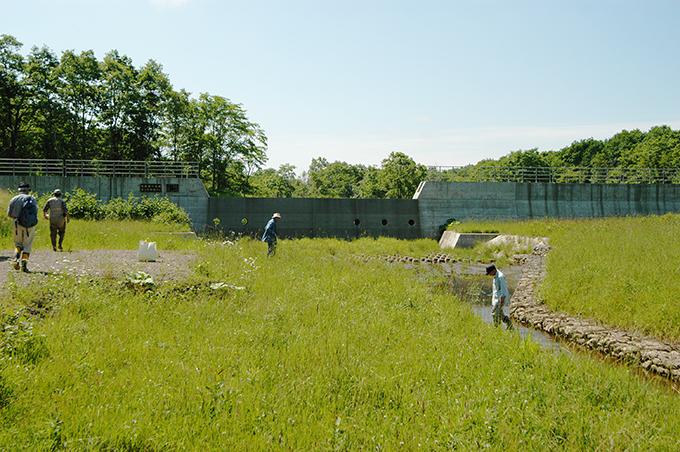 2006-07-28・加工済・風蓮川・001