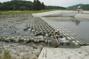 さらに下流には農業用取水堰(頭首工)がある。この取水堰は固定式で、つまり、砂利が流れ出さない構造になっているから、砂防ダムと同じ効力がある。