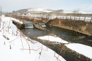 2007-02-19-02・加工済・山崎川落差工・魚道 019