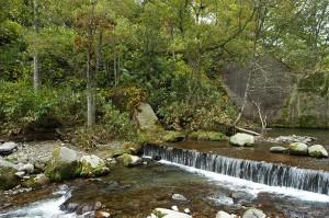 この治山ダムは主ダムと副ダムの2段構えになっている。副ダムの直下では段差が生じている。今後、段差が広がっていくと思われる。また、苔むした石が残されているが、こうした石で河原は満たされていたのである。