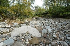 治山ダムから下流は、砂利が流され、川底が下がっている。