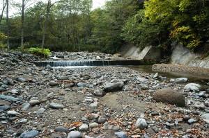 堤体のあまり高くない治山ダムだ。