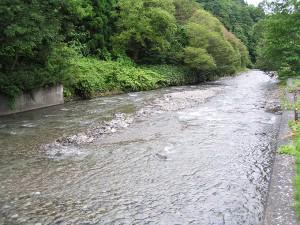 取水堰の下流側