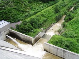 ダムが無い場合はきれいな水の流れに戻るのに…ダムがあるとダムに貯まった泥水が流され続ける。この泥水の影響は計り知れない影響を与えているのだが、それを突き止める調査や研究はされていない。だから、野放しにされている。