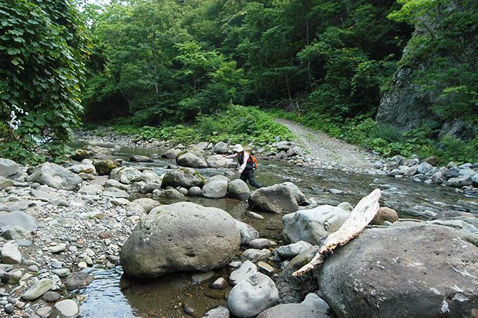同じ場所の6年前の現場である。この取り付け道路が無くなっている。河床低下のすさまじさを知ることができる。2008年8月11日。
