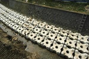 川底が下がらないようにコンクリートブロックが敷き詰められている。