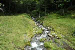 治山ダムから下流を見る