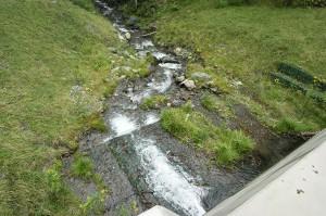 治山ダムの直下。