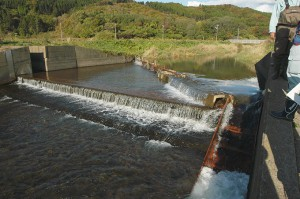 この川に農業用の取水堰があり、魚が上れないから、魚を上らせるために魚道を建設する話が浮上した。