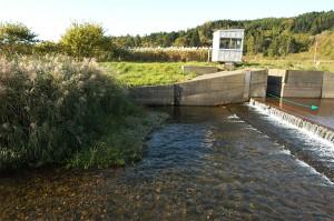 取水堰にはすでに魚道が設置されているのに…作り直すのだとか。