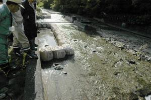 川に張り出さない魚道の建設が進められていた。