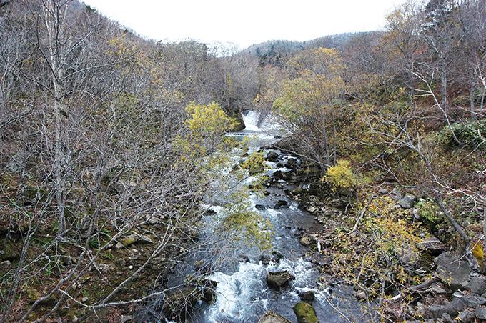 湖のように水をせき止めていた治山ダムの下流。