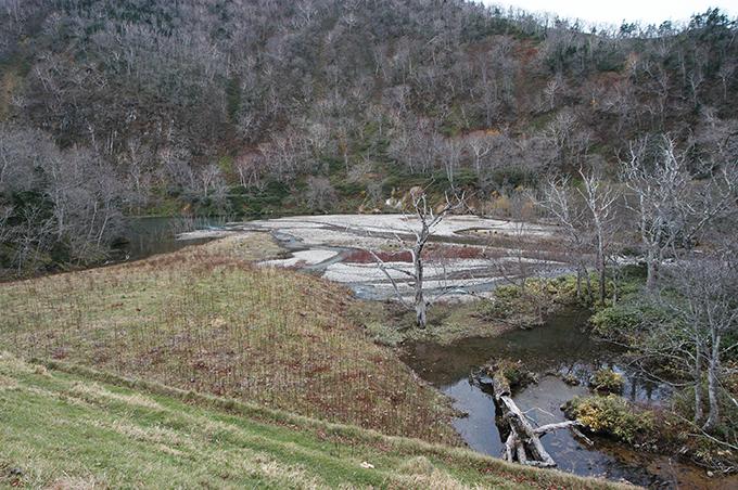 治山ダムがあり、流れ下った砂利が止められている。上流の渓谷にあって、河口のような風景となっている。