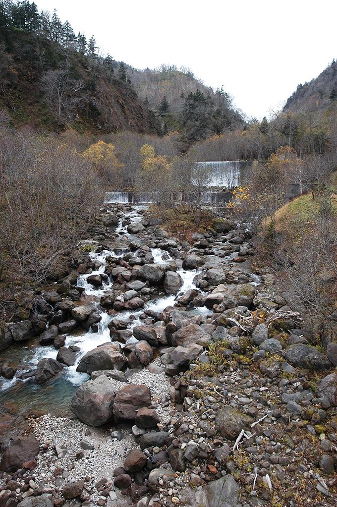羅臼岳から流れ出す川。急峻な川だから、川の石は巨石が目立つ。巨石が互いに噛み合い動かなくなっている。そこへ治山ダムが建設され、建設されたことで、川が荒れてきた。じっくりと見ていただきたい。