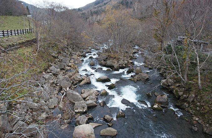 羅臼川の脇に「熊の湯」がある。