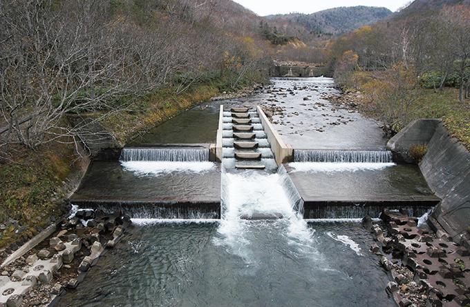 治山ダムの下に、またダムが…
