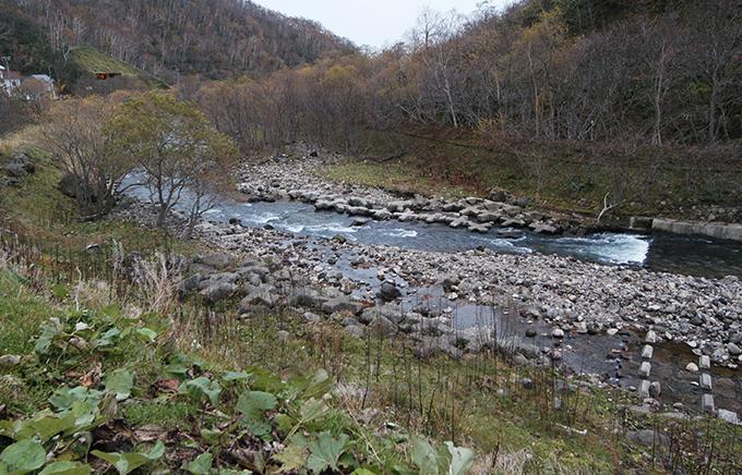 川底にコンクリートブロックを敷き詰めても、さらに川底は下がり続ける。コンクリートブロックが水面から上に出て干上がっている。
