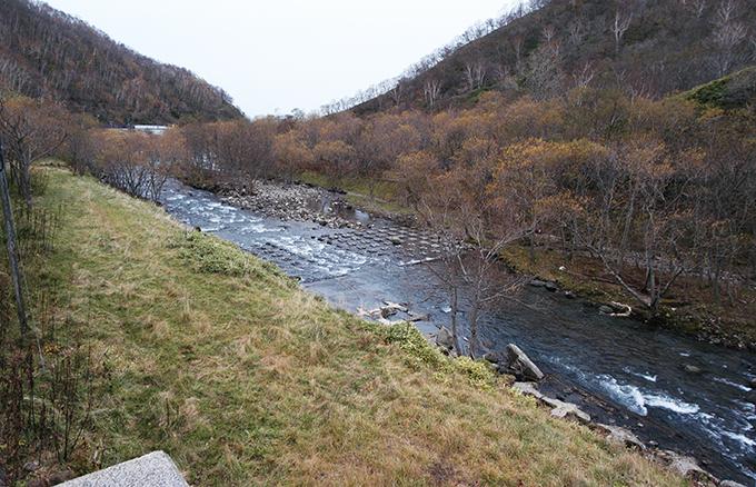 至る所に、川底が下がらないようにするために、コンクリートブロックが敷き詰められている。