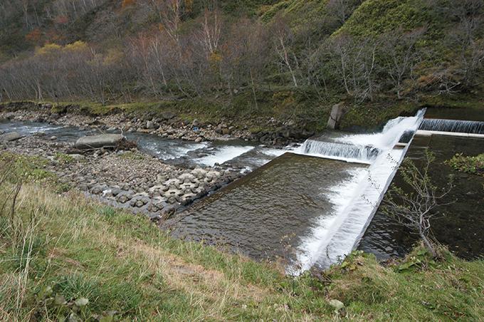そのダムの下流では川底が下がり、川岸が崩れている。