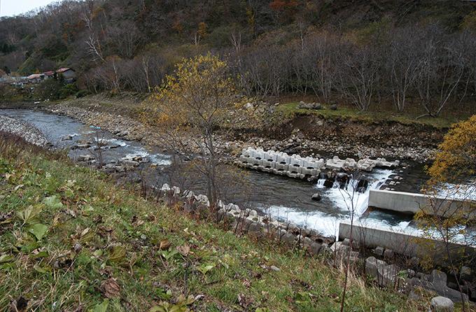 そして、そのダムの下流では川底が下がり、川岸が崩れ…