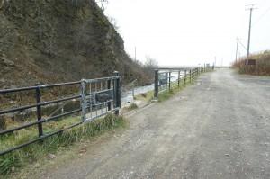 河口近くの川岸に階段があり、ここを下りて、間近でカラフトマスを見ることができる。