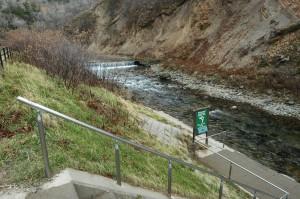 カラフトマスを見るための川岸は船着き場のようになっている。すぐ上流には低いダムがある。大きな石はあまりなく、小さな石ばかりである。また、石の量も少ない