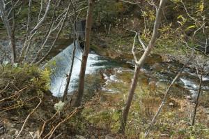 さらに上流にも治山ダムがあった。ダムの下流側では砂利が少なく、岩盤が露出しているのがわかる。