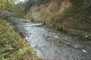 さらに上流にも治山ダムがあった。