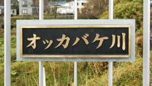 2009-11-01・加工済・トリム・知床・オッカバケ川・DSC_0335