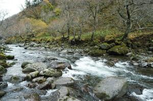 巨石は互いに挟まりあい、噛み合って動かないようになっている。その直下は流れは滝になり、段差ができているのが分かる。これが自然のダムともいえよう。しかし、人工のダムとは構造も仕組みも全く違うものである。