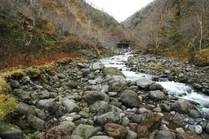 治山ダムから下流は全体に川底が下がり、両岸は崩れて垂直の崖状になっている。