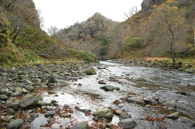 この治山ダムの堆砂域は上流へと広がっている。石の大きさが小ぶりになっている。